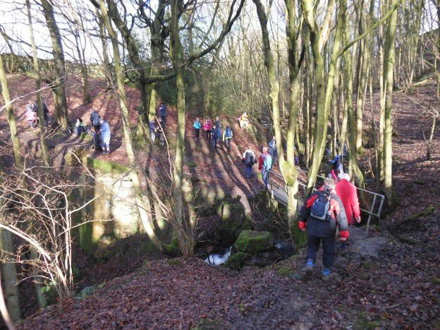 silsden 19jan2015 into the woods we go